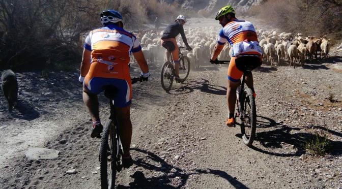 Quedada de Febrero. Ruta Alcubillas.#ciclismoalmeria